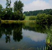Places to fish in Deeside and Flintshire